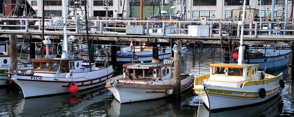 Fishermans-Wharf-2-NorCal-Destinations-Guided-Tours-San-Francisco-California-Wine-County-Napa-Muir-Woods-Monterey-Yosemite-Groups1