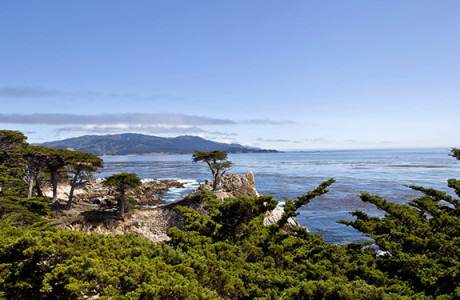Monterey bay viewed during guided tour of Monterey & Carmel in English