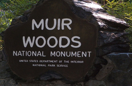 Muir Woods national monument seen on guided tour of Muir Woods in Spanish